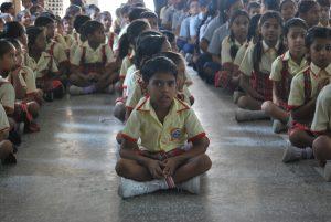 Galeria Pequenobuda India 3